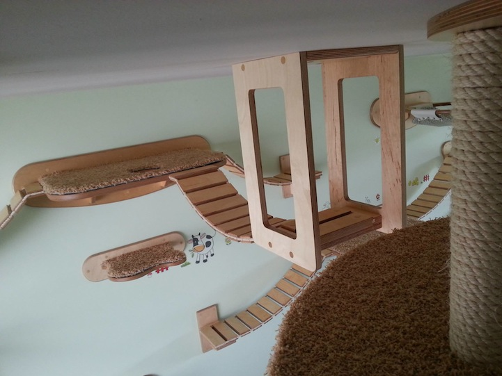 Rooms transformed into suspended cat playgrounds for Diy cat playground