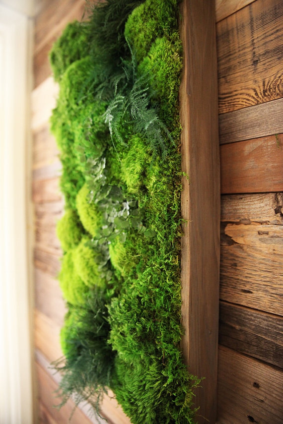 Eco-Friendly Botanical Wall Art Brings the Self-Sustaining ...