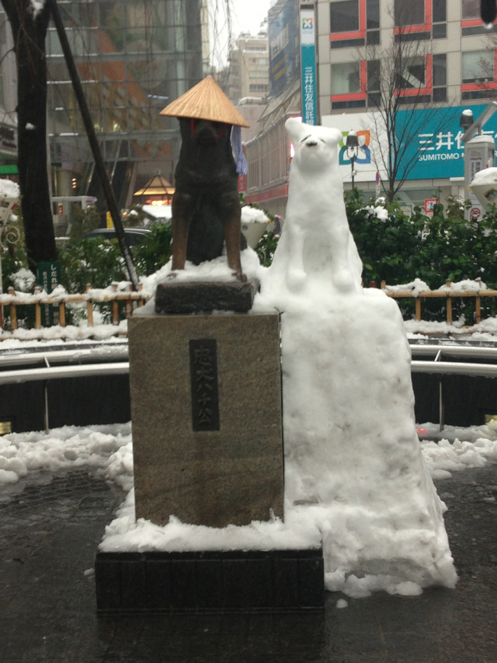 7 Identical Snowdogs Pop Up Next To Statue Of Hachiko