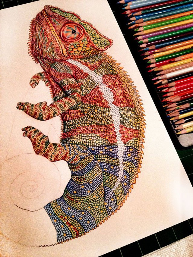 Amazingly Colorful Drawings of Reptiles by Illustrator Tim ...