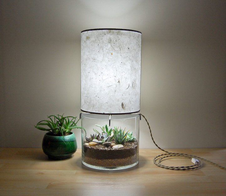 Sleek Glass Bottomed Lamp Allows You To Plant Your Own Terrarium In