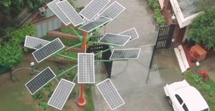 One Compact Solar Power Tree Generates Enough Electricity
