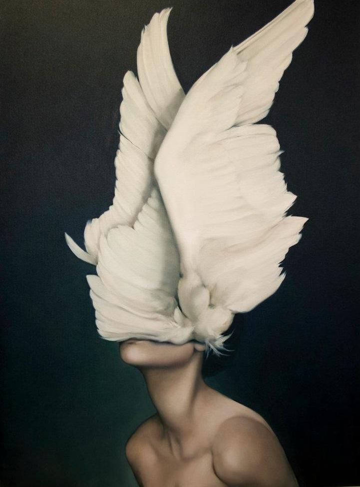 Various Soft Illusions