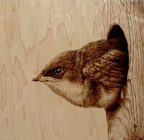 Wood Burned Illustrations Of Animals