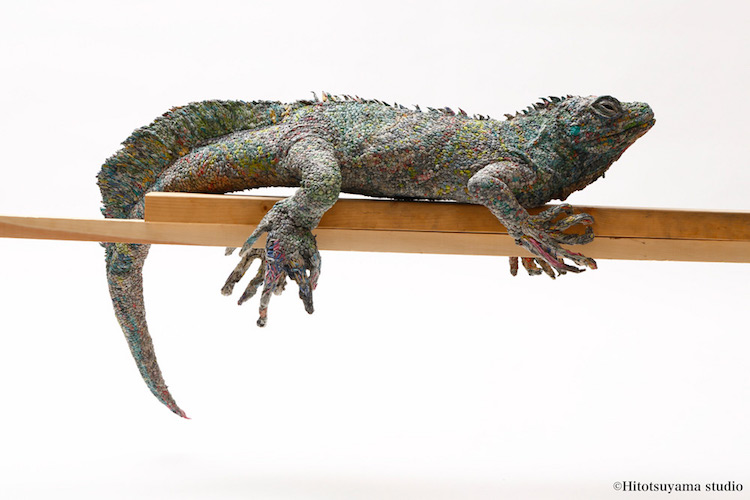 Newspaper Transformed Into Life-Sized Iguana