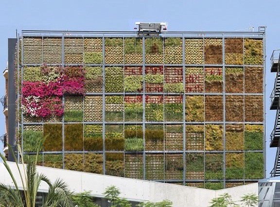 Vertical Garden Lives on Buildings Wall 6 pics