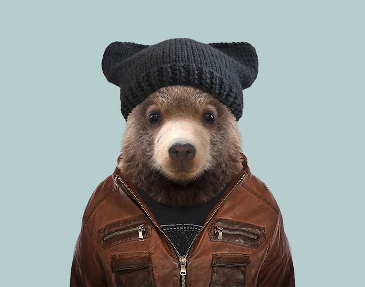 yago partal baby animal portraits animals dressed like humans bear