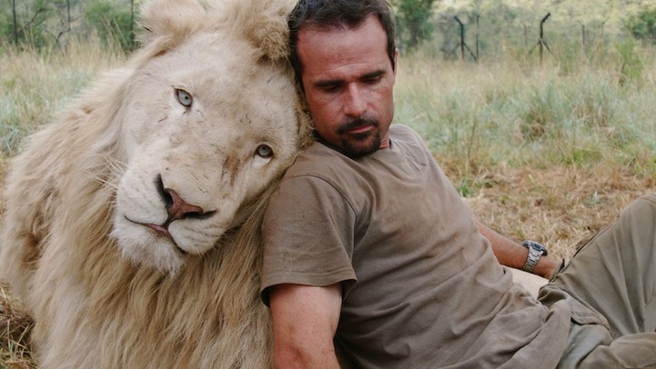 Kevin Richardson The Lion Whisperer on animal art lions