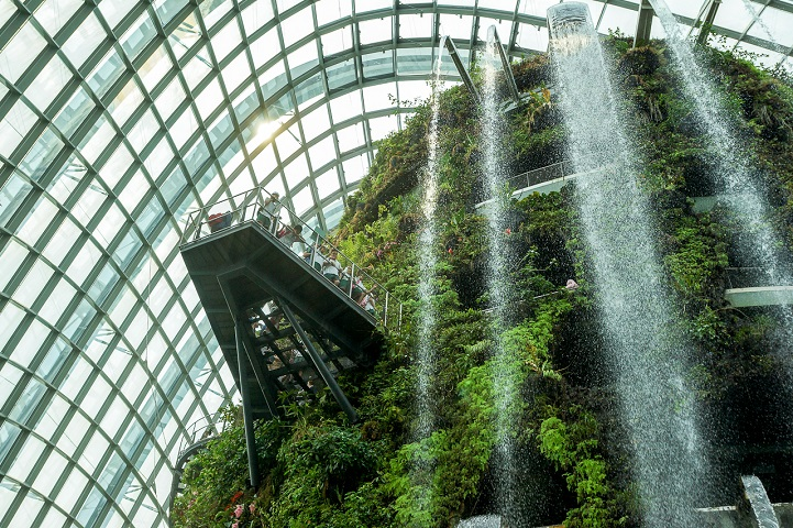 Towering biodome features world 39 s largest indoor waterfall for Indoor gardening singapore
