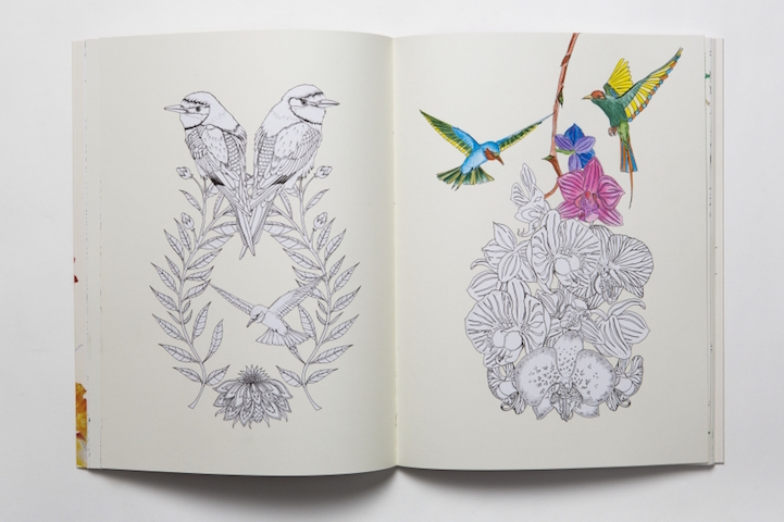 Leahs Farm Coloring Book : Exquisite coloring book features over 70 pages of whimsical bird