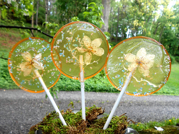 Edible Flower Lollipops | Festive Edible Gifts To Make And Give This Season