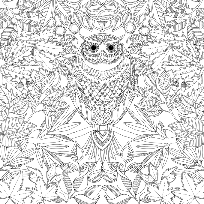 Enchanted Garden Coloring Books Adult Animals