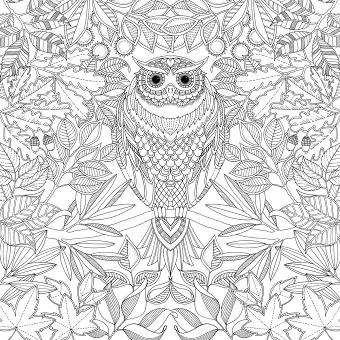 Johanna Basford Enchanted Garden Coloring Books Adult Animals