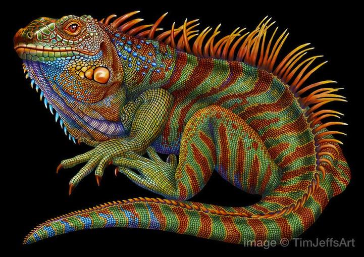 Lizard Design New York
