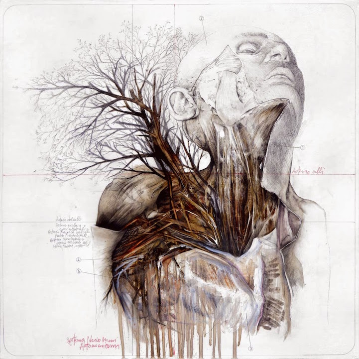 Anatomy Of A Combine : Gorgeous drawings combine the human body with nature