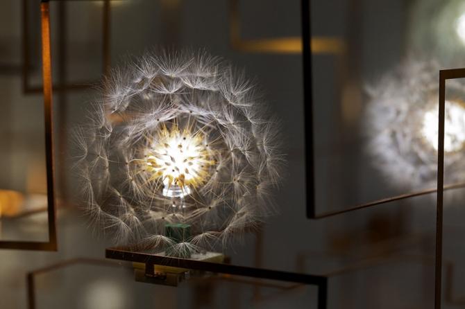 Real Dandelions Surround LED Lights in Unique Chandeliers – Unique Chandeliers