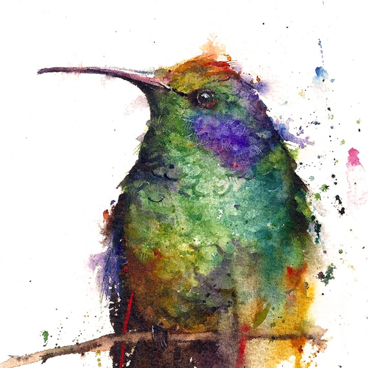 Animal Watercolor Portraits Burst with Color