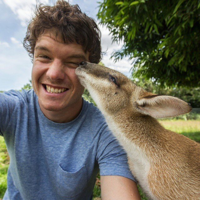tips for taking the best selfies with animals