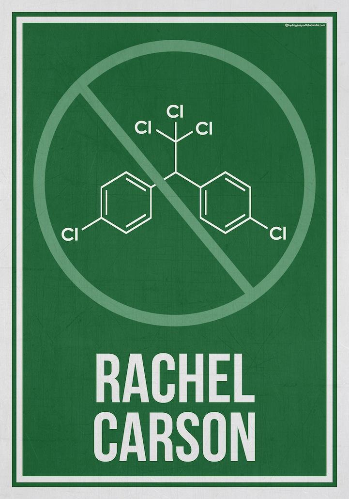 Minimalist Classroom History ~ Minimalist poster series honors science s women pioneers