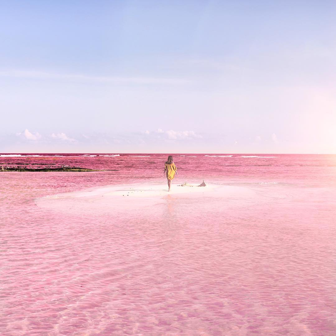 Naturally Pink Lagoon In Mexico Is Like A Real Life Fairy Tale Dreamscape