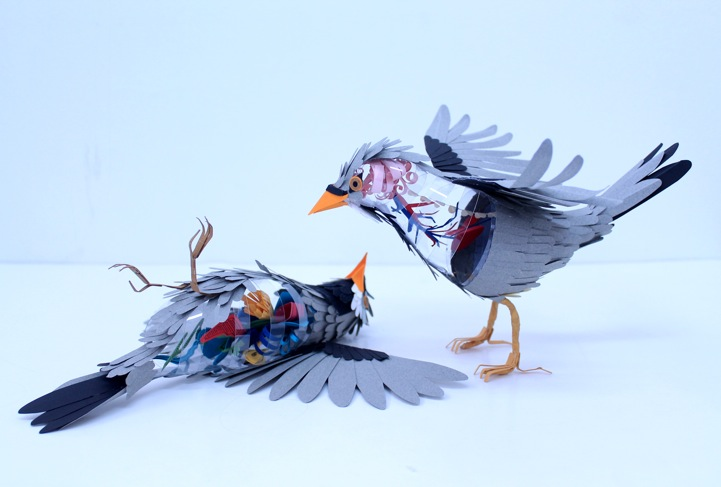 Amazing Paper Bird Sculptures Reveal Their Internal Anatomy