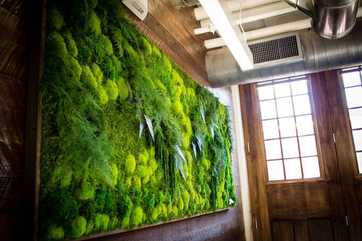 Eco Friendly Botanical Wall Art Brings The Self Sustaining