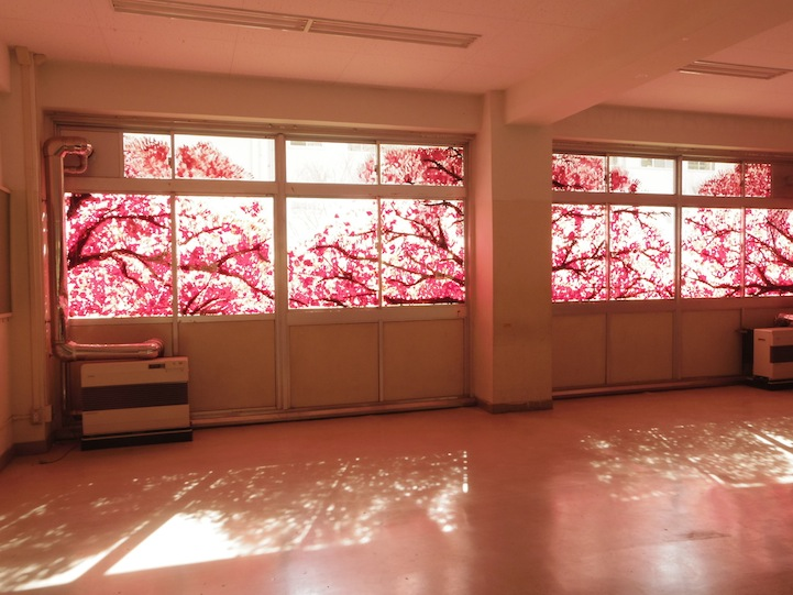 Spectacular cherry blossom murals made with hand prints for Cherry blossom tree mural
