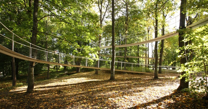 Modern Suspended Forest Walkway