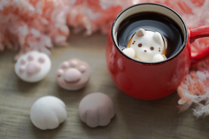 Cup Coffee Cat Cafe Designs