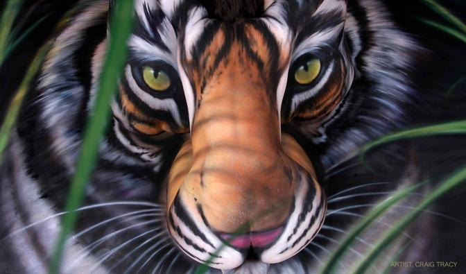 Dare once tiger body paint