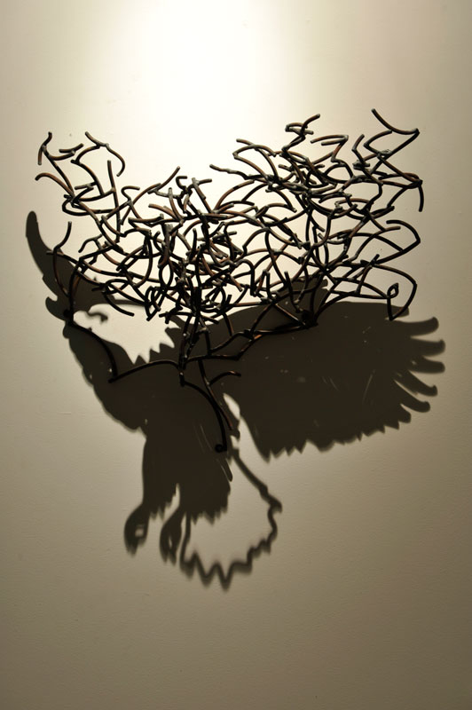 incredible shadow drawings appear through mangled wires