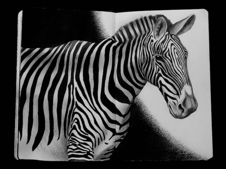 Countless Pens Used to Draw Detailed Animals Portraits