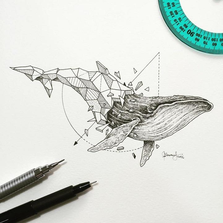 Wild Animal Illustrations Burst Out of Geometric Encasings