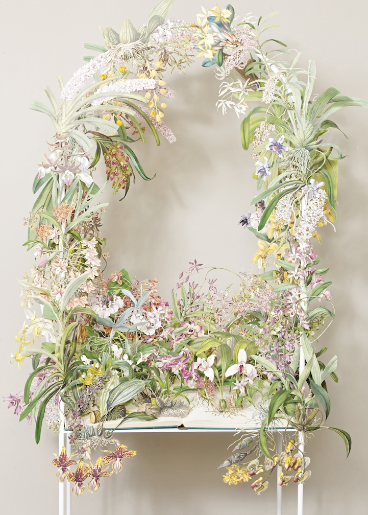 Beautiful paper cut sculptures resemble living floral wreaths mightylinksfo