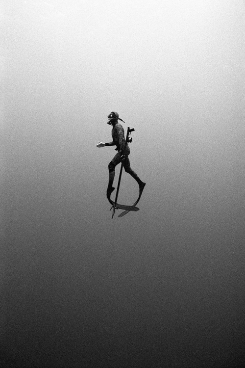 Incredible black and white underwater photography