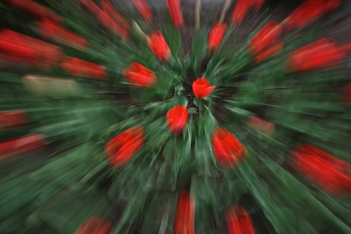 The Zoom Blur Effect (15 photos)