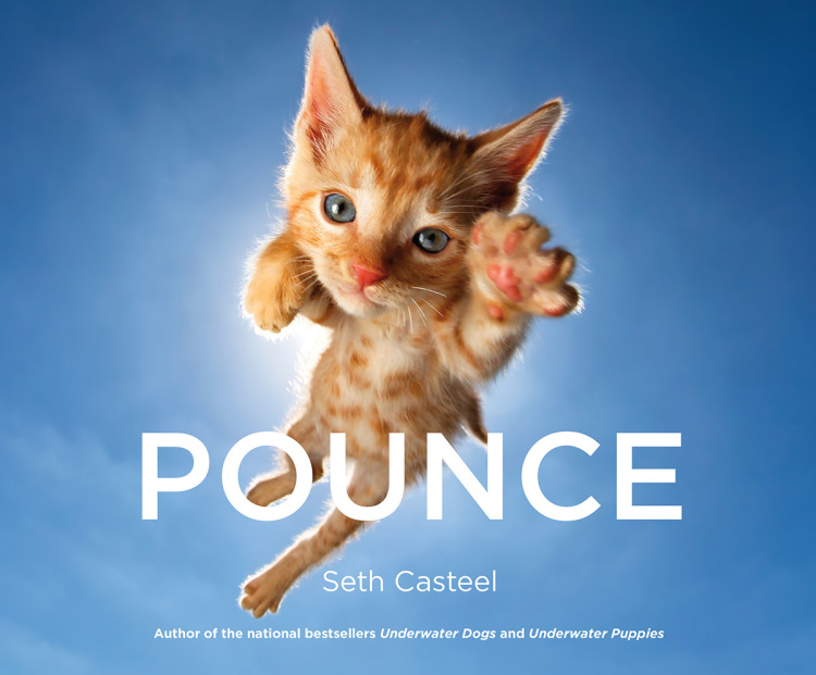 Pounce By Seth Casteel