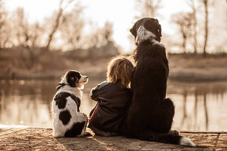 Polish Mother Captures Heartwarming Photos Of Her Son And Their - One boy dog heart warming