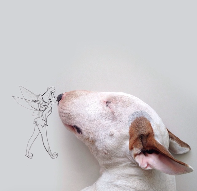 Bull Terrier Continues To Interact With Owners Whimsical Doodles - Bull terrier art
