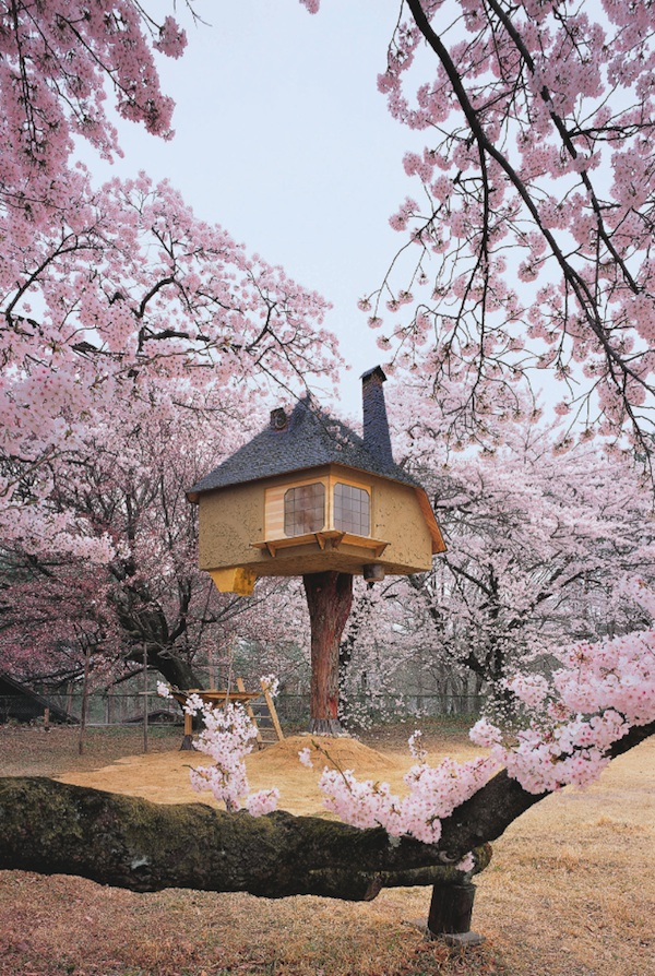 The 50 most amazing tree houses in the world for Amazing houses in the world