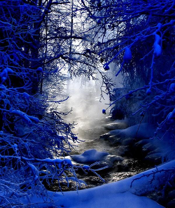 Beautiful Winter Scenes 15 Photos