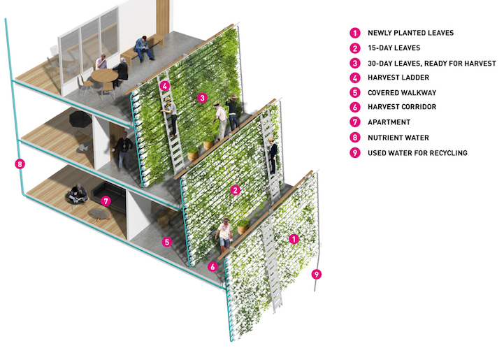 Revolutionary Homefarm Combines Retirement Homes With Eco Friendly Vertical Farming