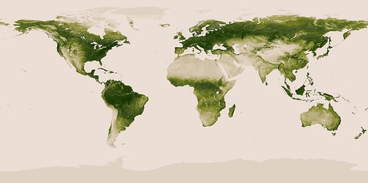 Interactive Map Of Earth S Vegetation Rendered Through Nasa Satellite